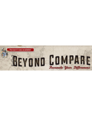 Beyond Compare 4 Multi Platform Pro Edition
