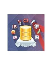 Universal Data Access Components Professional - licencja dla pojedynczego użytkownika